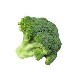 Brocolis récolté en espagne